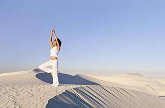 来自印度基础瑜伽三