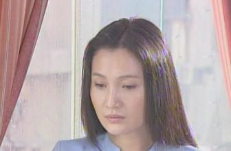 《悲情丽人》10集